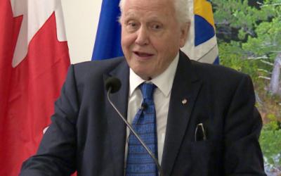 Livestream of Sir David Attenborough & Dan Snow